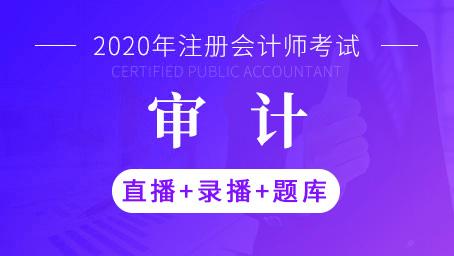 2020年注册会计师-审计(直播+录播+题库)
